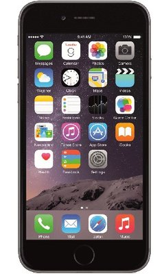 Apple iPhone 6 16Go Gris